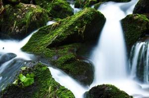 Zdjęcie górskiego potoku z kaskadami